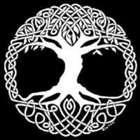 Avatar of Florent DESPIERRES, a Symfony contributor